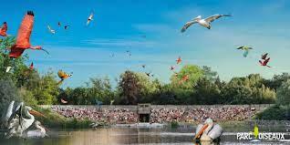Venez découvrir ou redécouvrir le parc des oiseaux de Villars-les-Dombes et son spectacle d'oiseaux en vol le temps d'une journée. […]